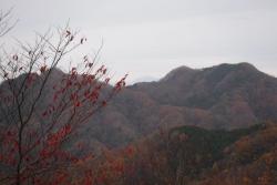 奥久慈MT