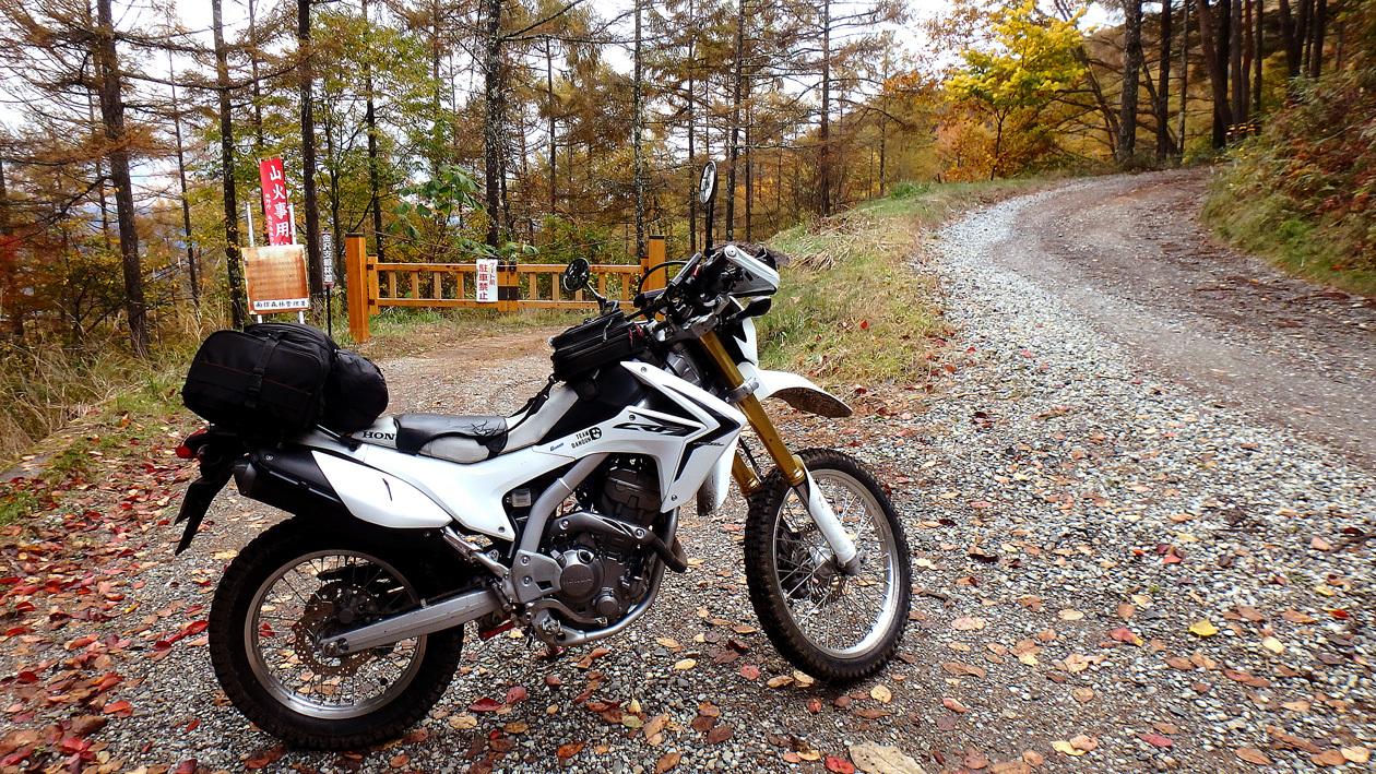 2016-11suwako006.jpg