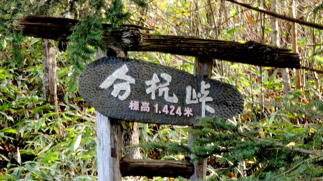 2016-11suwako025.jpg
