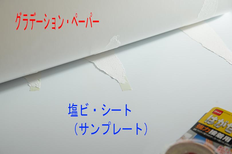 2016_1203_02.jpg
