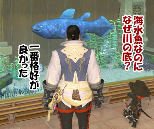 海水魚なのになぜ川底