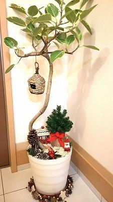 s-クリスマス用飾り