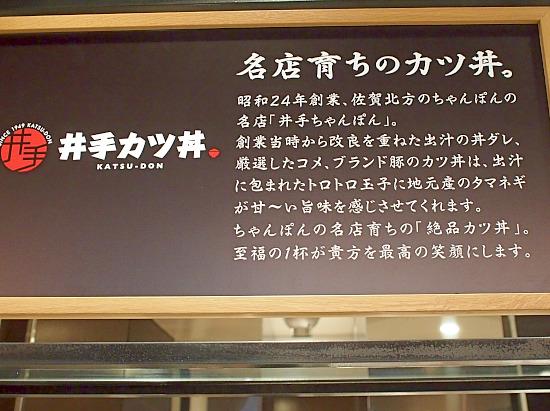 s-井手3P1120604