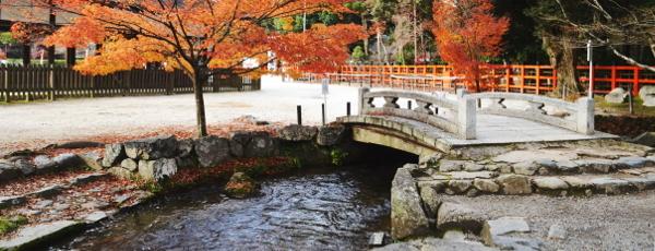 ならの小川と石橋