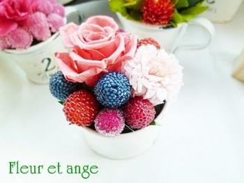 fleur429.jpg