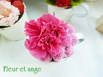 fleur430.jpg