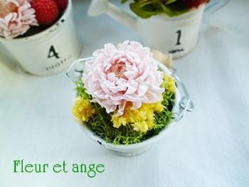 fleur434.jpg