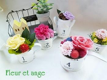 fleur435.jpg