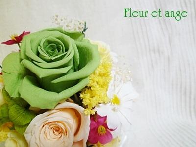 fleur443.jpg
