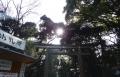 明治神宮 (6)