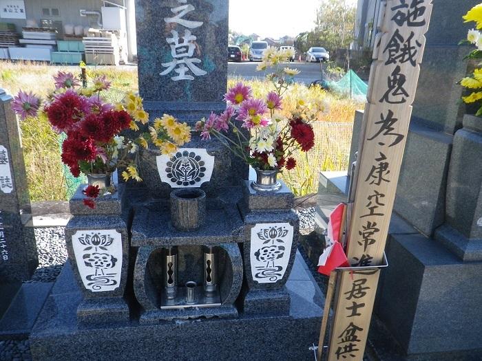 菊2_16_12_03