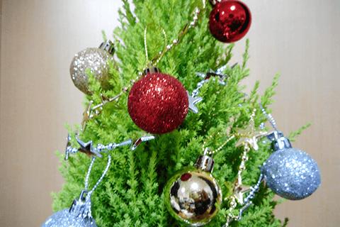 コニファーで作るクリスマスツリー