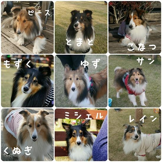 20161113_4947.jpg