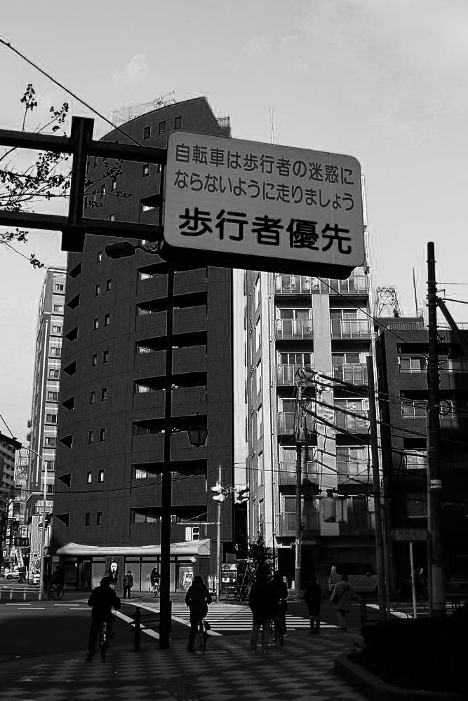 IMG_2538-1000.jpg