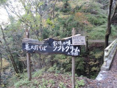 2016.11.大持小持武甲山