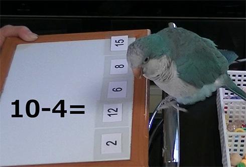 暗算1_4