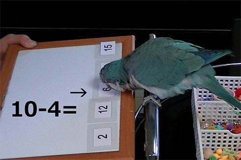 暗算1_5