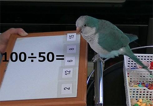 暗算1_8