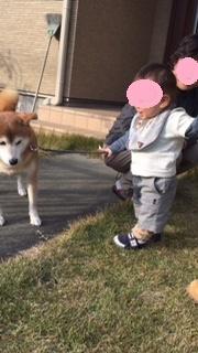 ぽんちゃんと2