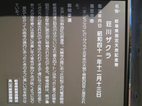 2016_1112_100620-IMG_4153_convert_20161207214852.jpg