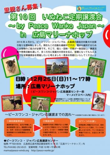 12月譲渡会_edited-5-thumb-400xauto-1253