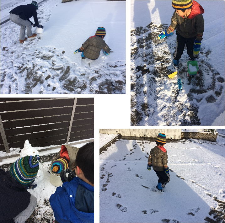 snow_201701172133113ca.jpg