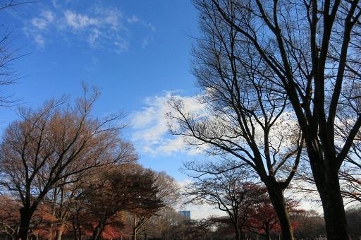12-12冬空