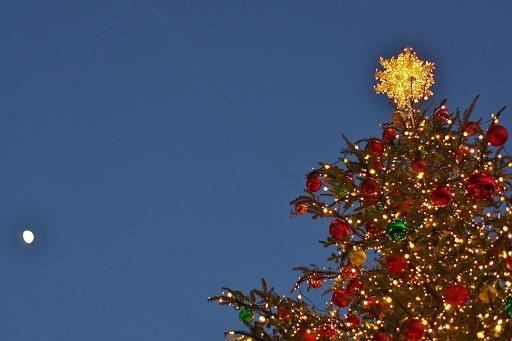 12-12月とツリー横