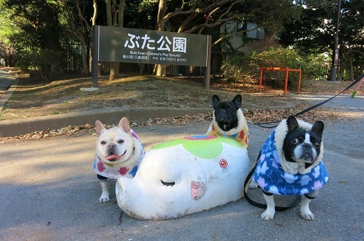 1-17豚公園記念