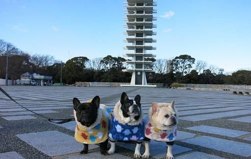 1-17公園しぶ記念