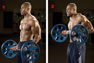 Barbell-Drag-Curls.jpg