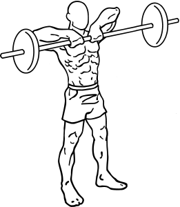 Barbell-upright-rows-1_2016122408155727f.png