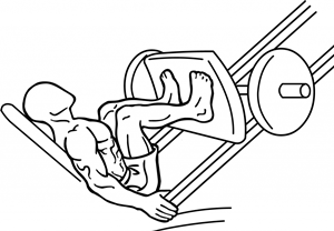Narrow-stance-leg-press-2-1024x671-crop.png