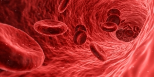 blood-1813410_960_720.jpg