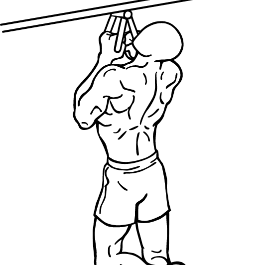 narrow-parallel-grip-chin-ups-1-crop.png