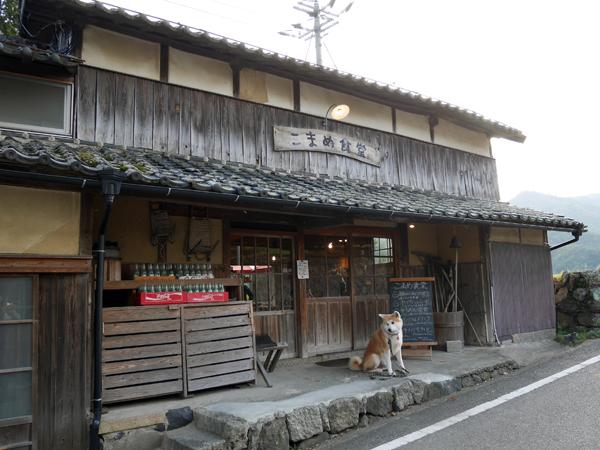 b_20161118_77.jpg