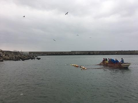 岩城漁港2