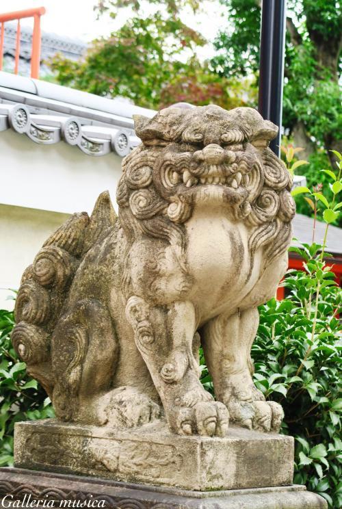 八坂神社 狛犬。0