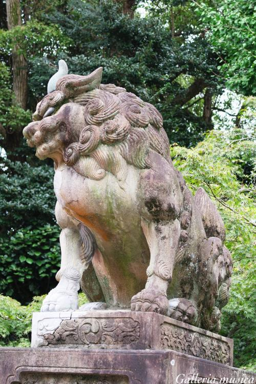 八坂神社 狛犬。7