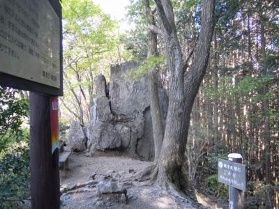 岩茸石棒の折山161112
