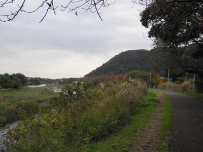 花水川沿い161116