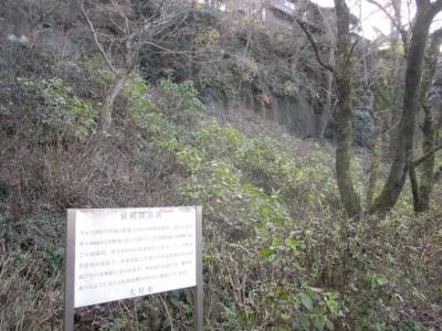 猿橋溶岩流161209