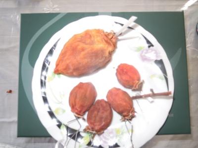 大小の干し柿