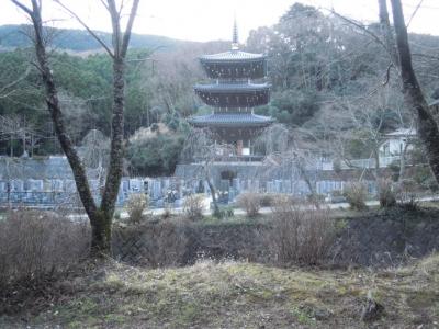 浄発願寺170105