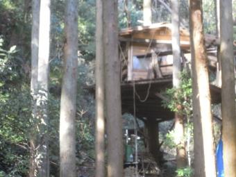 ツリーハウス谷戸川沿い170208