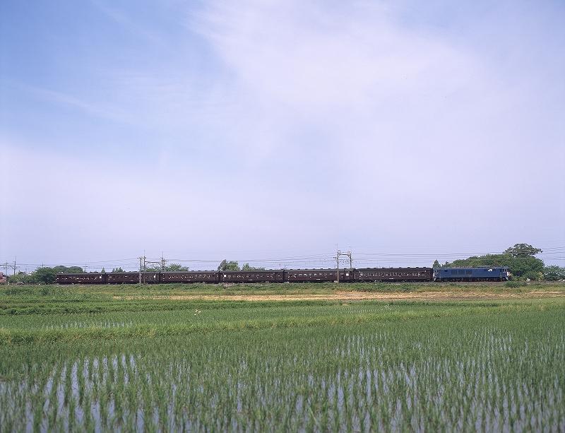 東蓮 RDPⅢ