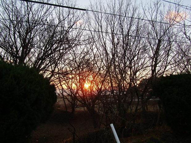 冬の夕日1