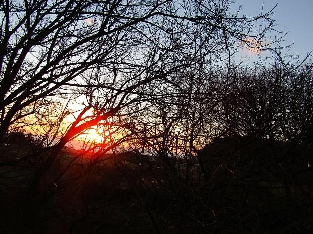 冬の夕日2