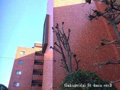 シャンボール学芸大1228002