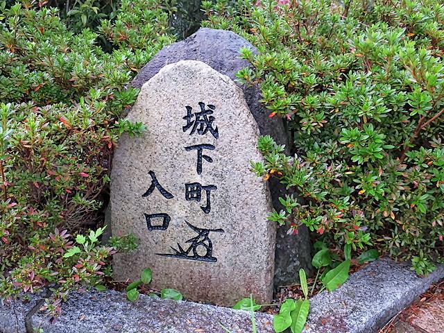 161124shikano01.jpg